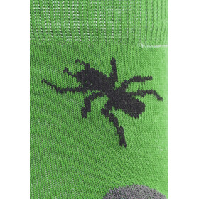 axant Trekking Calze Bambino pacco da 3 grigio/verde